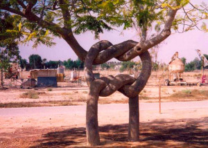 albero-col-nodo