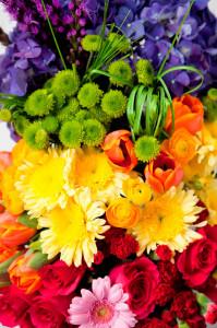 flowers-colors